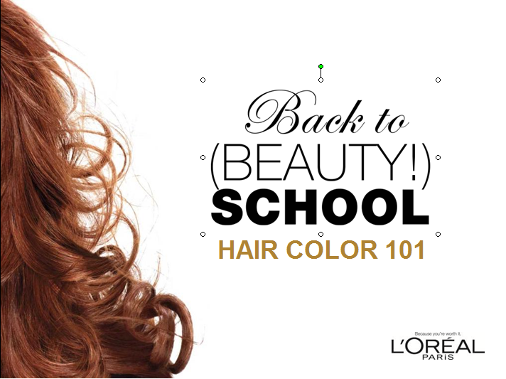 L'Oreal Paris Target Concierge Training ppt.